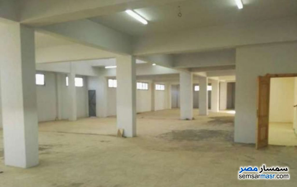 Photo 6 - Land 1,350 sqm For Sale Ajman Industrial Area 6th of October