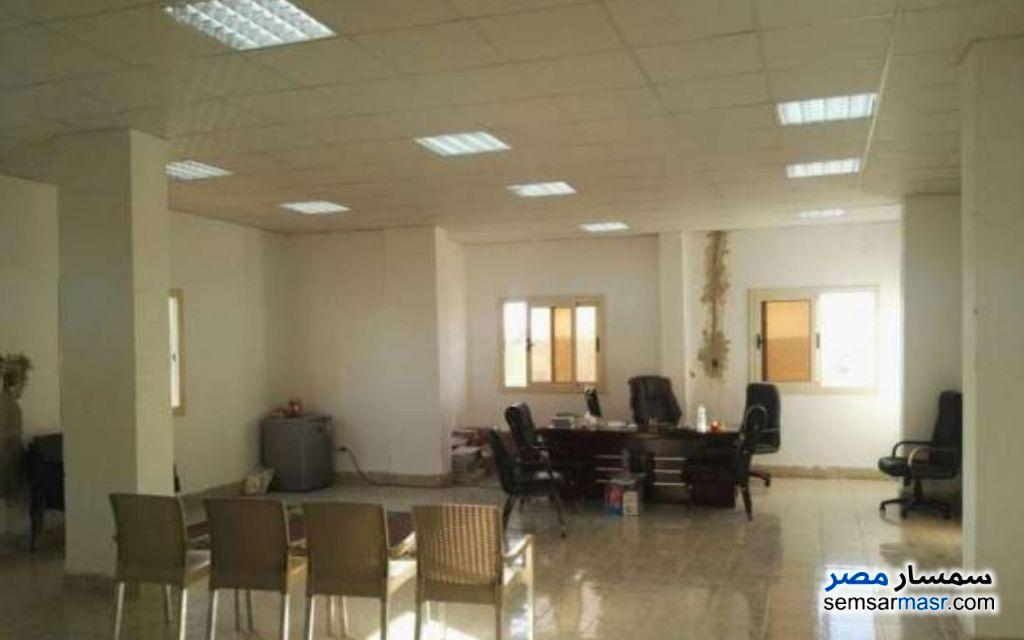 Photo 8 - Land 1,350 sqm For Sale Ajman Industrial Area 6th of October