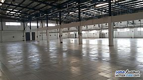 Ad Photo: Commercial 4000 sqm in Badr City  Cairo