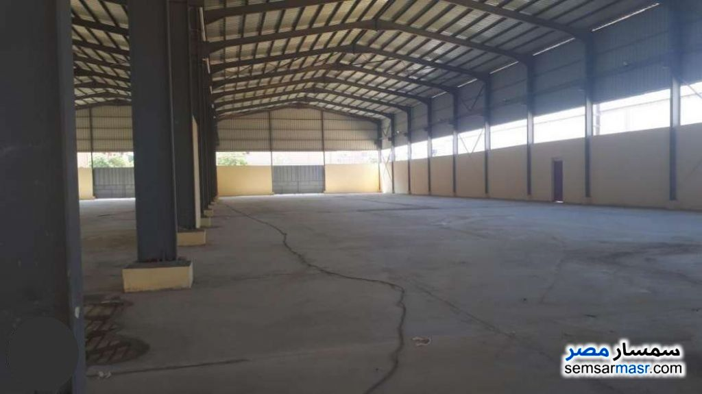 Photo 3 - Commercial 5,184 sqm For Sale ajman industrial area 6th of October