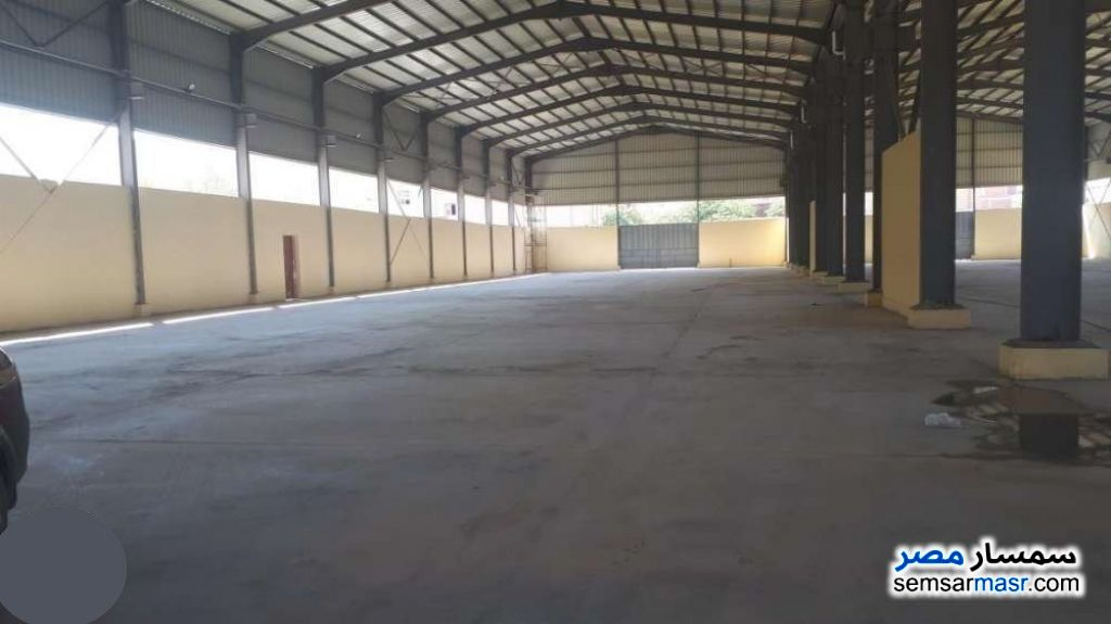 Photo 4 - Commercial 5,184 sqm For Sale ajman industrial area 6th of October