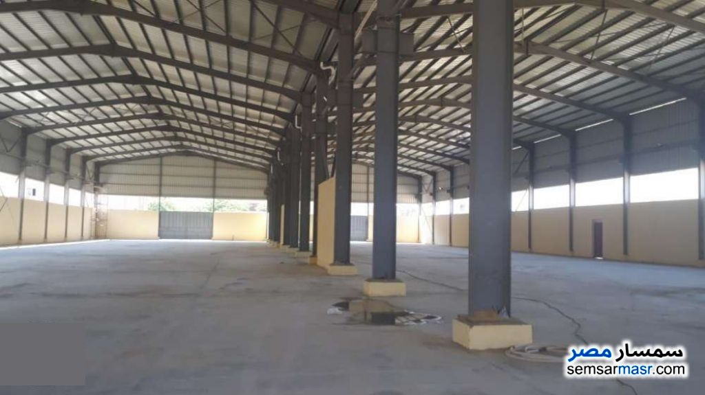 Photo 6 - Commercial 5,184 sqm For Sale ajman industrial area 6th of October