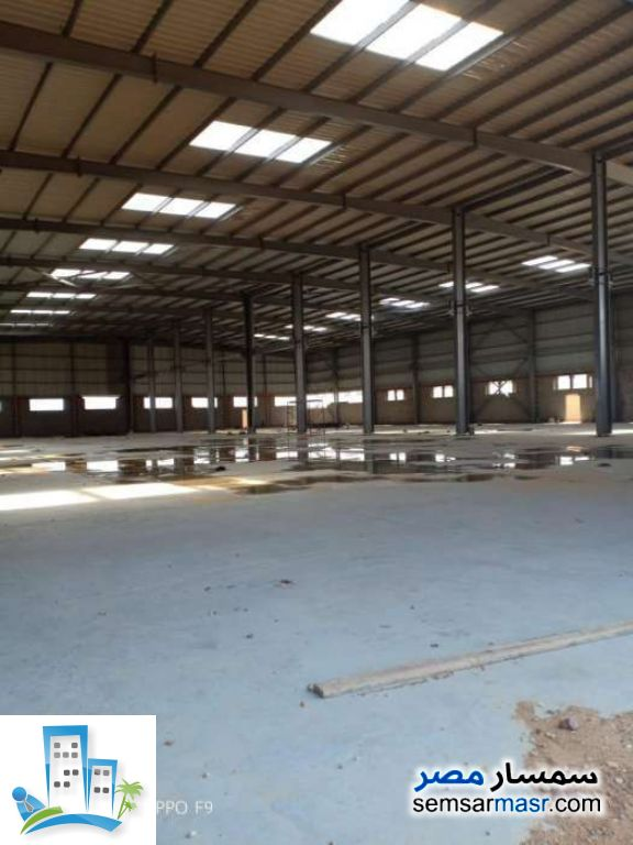 Ad Photo: Commercial 3300 sqm in Sadat  Minufiyah