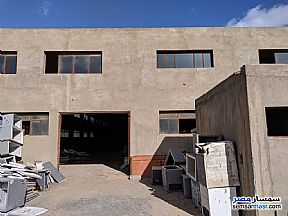 Ad Photo: Commercial 2800 sqm in Ajman Industrial Area  6th of October