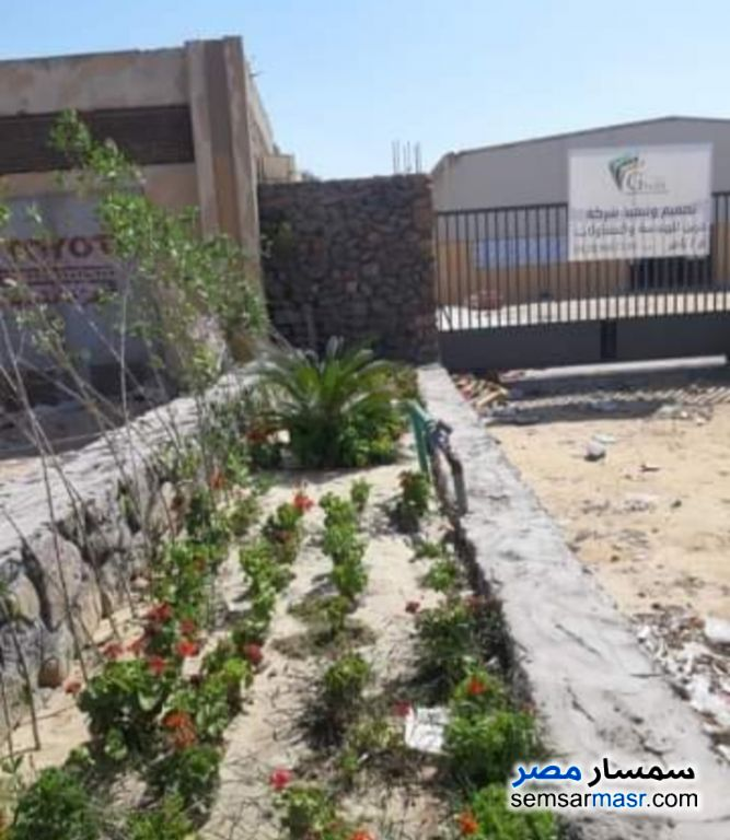 Photo 3 - Land 5,000 sqm For Rent Ajman Industrial Area 6th of October