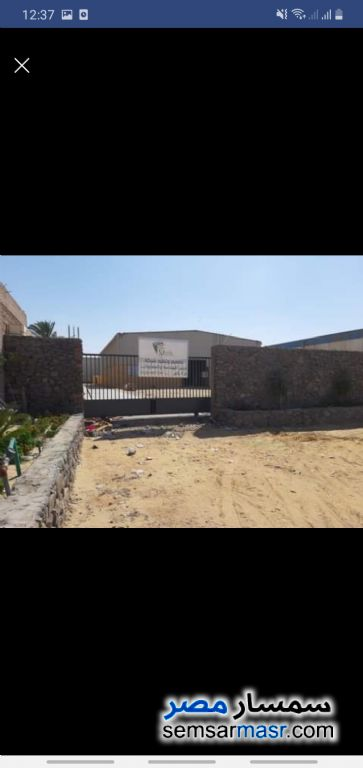 Photo 6 - Land 5,000 sqm For Rent Ajman Industrial Area 6th of October