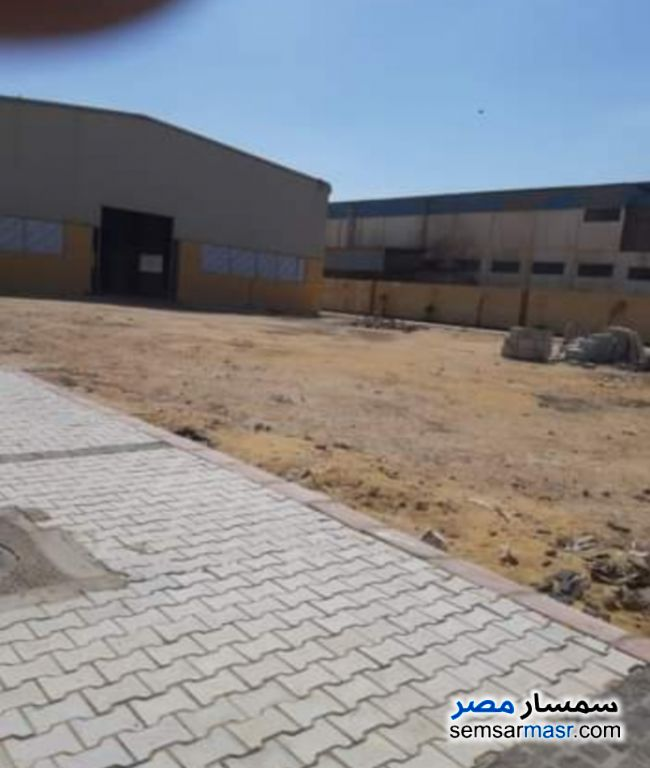 Photo 5 - Land 5,000 sqm For Rent Ajman Industrial Area 6th of October