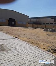 Land 5,000 sqm For Rent Ajman Industrial Area 6th of October - 5