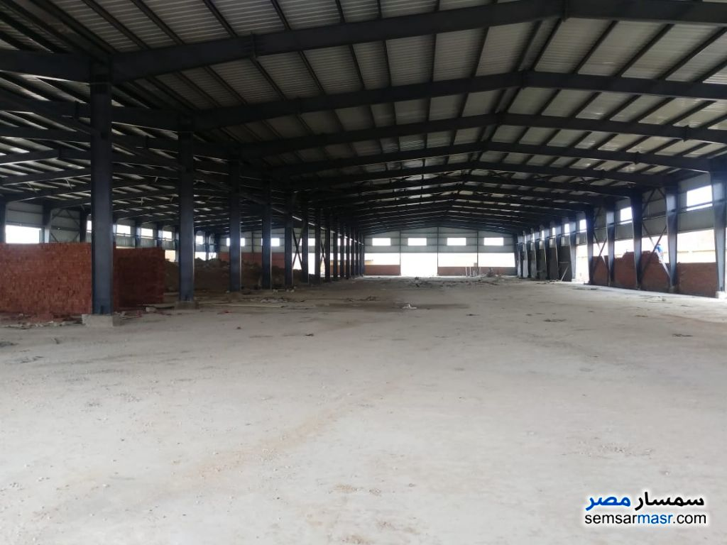 Ad Photo: Land 12000 sqm in 6th of October