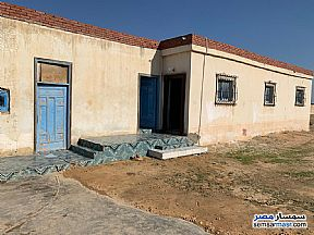 Ad Photo: Land 2300 sqm in Amereyah  Alexandira