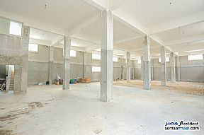 Ad Photo: Commercial 3000 sqm in Amereyah  Alexandira