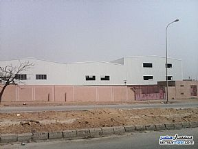 Ad Photo: Land 10000 sqm in 10th Of Ramadan  Sharqia