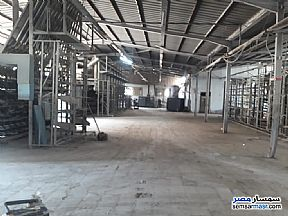 Ad Photo: Land 2500 sqm in Ajman Industrial Area  6th of October