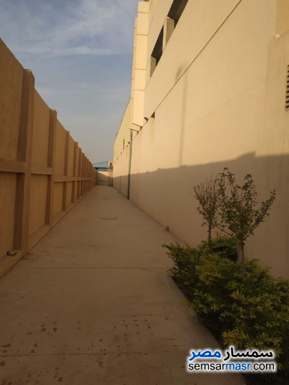Photo 6 - Land 3,235 sqm For Sale El Ubour City Qalyubiyah