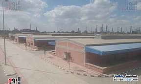 Ad Photo: Commercial 1500 sqm in Amereyah  Alexandira