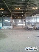 Ad Photo: Commercial 8500 sqm in Badr City  Cairo