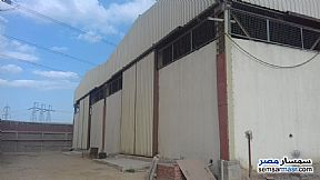 Ad Photo: Commercial 25000 sqm in 10th Of Ramadan  Sharqia