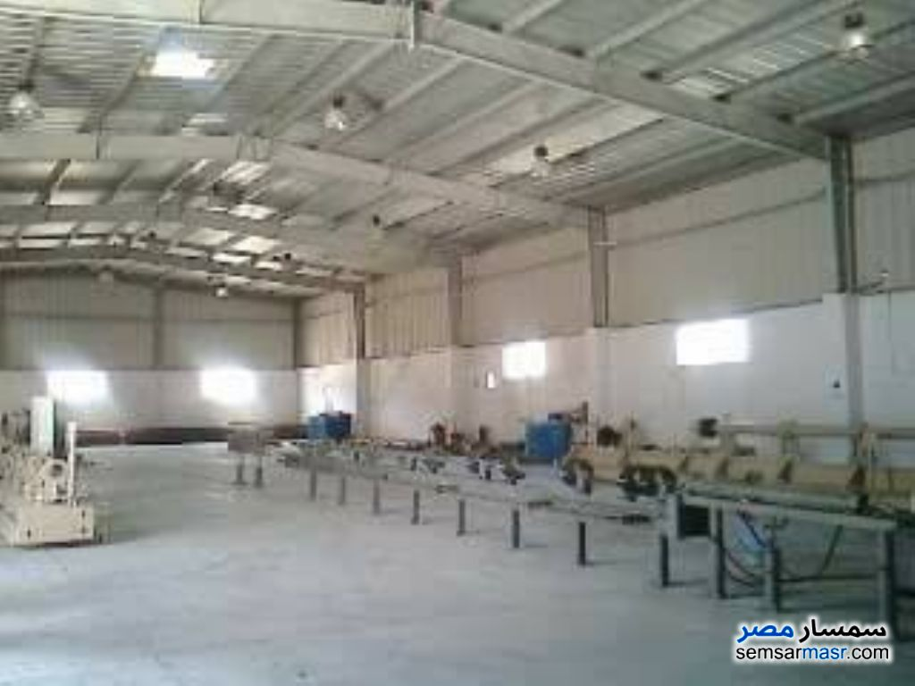 Photo 1 - Commercial 5,000 sqm For Sale Borg Al Arab Alexandira