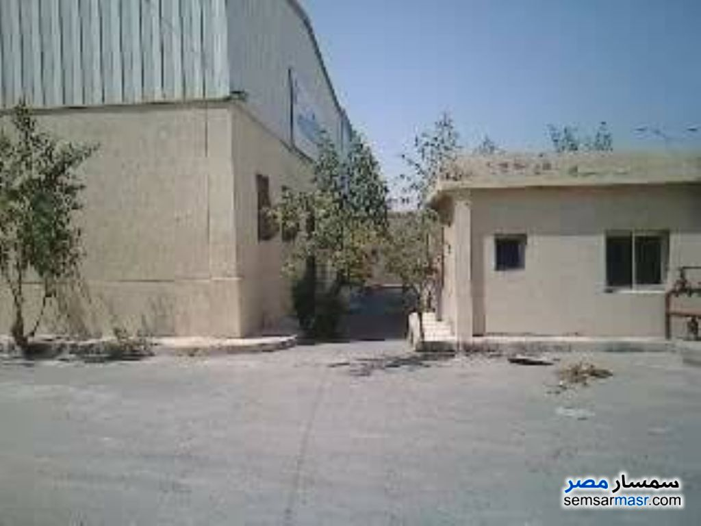 Photo 3 - Commercial 5,000 sqm For Sale Borg Al Arab Alexandira