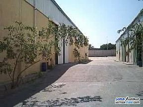 Commercial 5,000 sqm For Sale Borg Al Arab Alexandira - 4