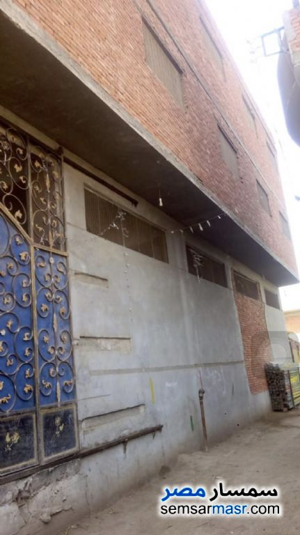 Photo 3 - Commercial 600 sqm For Sale Toukh Qalyubiyah