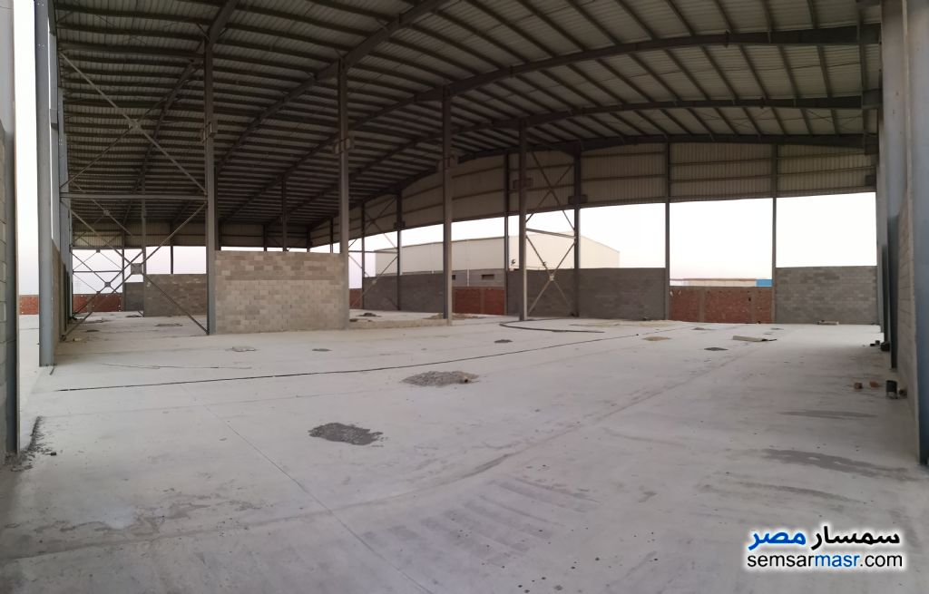 Photo 1 - Land 4,646 sqm For Sale Wadi Al Natrun Buhayrah