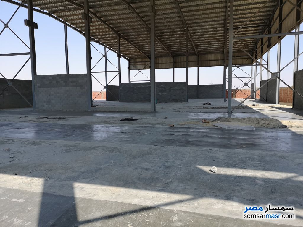 Photo 4 - Land 4,646 sqm For Sale Wadi Al Natrun Buhayrah