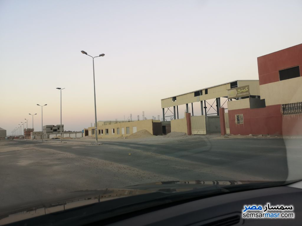 Photo 6 - Land 4,646 sqm For Sale Wadi Al Natrun Buhayrah