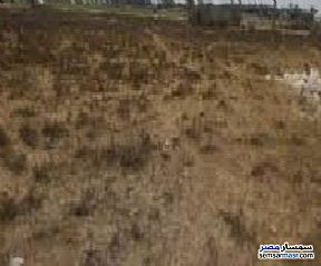 Ad Photo: Land 107 sqm in Fayoum City  Fayyum