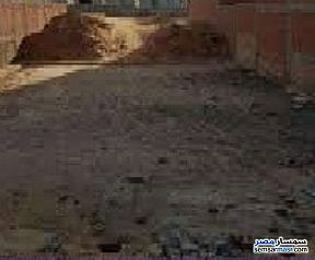 Ad Photo: Land 82 sqm in Fayoum City  Fayyum