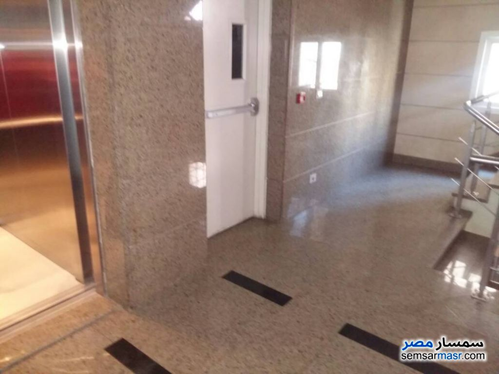 Photo 6 - Commercial 500 sqm For Rent Maadi Cairo