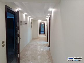 Commercial 250 sqm For Rent Dokki Giza - 3