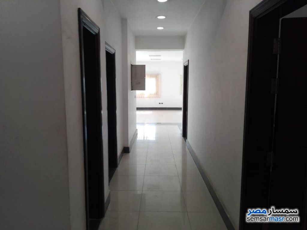 Photo 10 - Apartment 4 bedrooms 3 baths 450 sqm super lux For Rent Sheraton Cairo