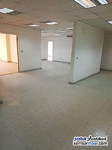 Commercial 800 sqm For Rent Mohandessin Giza - 1