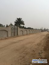 Ad Photo: Land 8579 sqm in Sheikh Zayed  6th of October