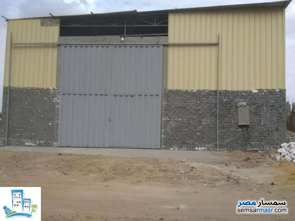 Ad Photo: Land 1000 sqm in Al Salam City  Cairo