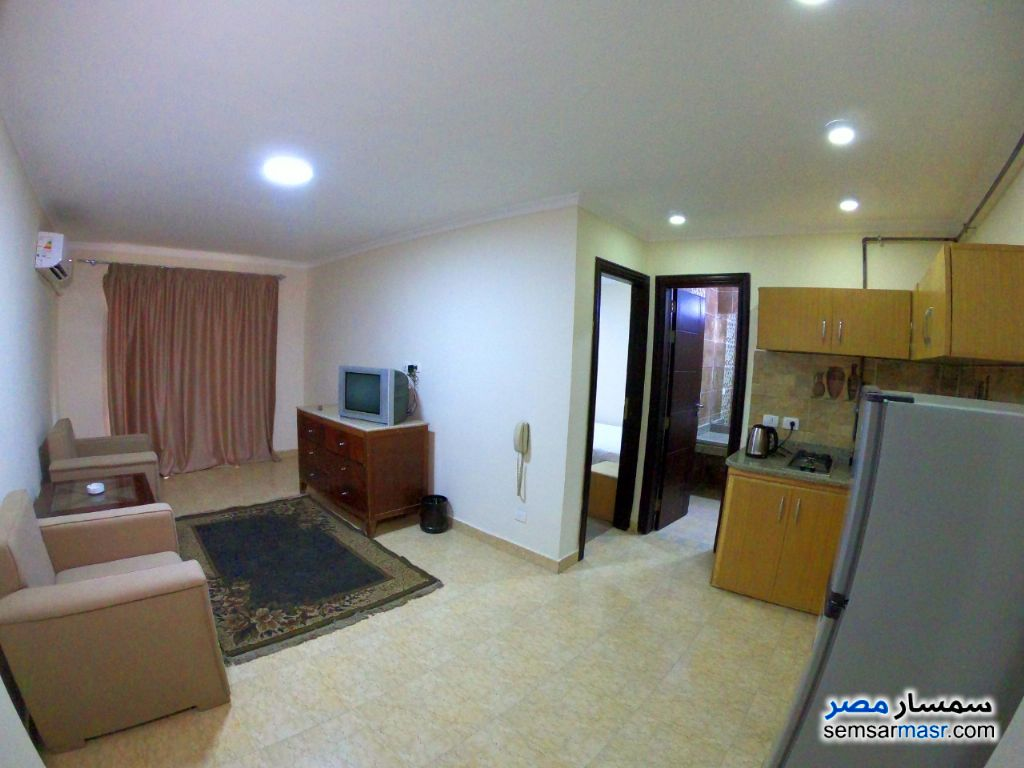 Photo 8 - Apartment 1 bedroom 1 bath 45 sqm extra super lux For Rent Dokki Giza