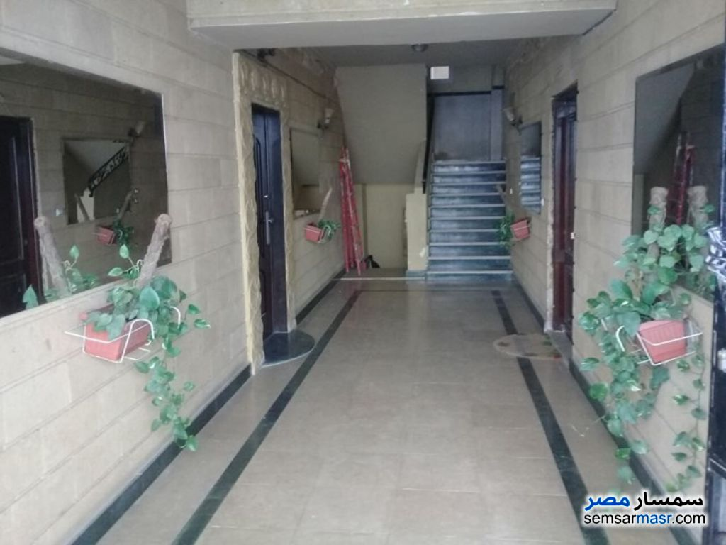Photo 3 - Villa 6 bedrooms 3 baths 500 sqm super lux For Sale First Settlement Cairo
