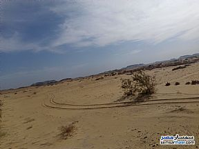 Ad Photo: Farm 100 acre in Bahariya Oasis  Giza