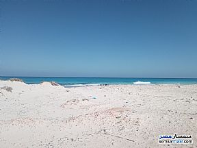 Ad Photo: Land 8000 sqm in Marsa Matrouh  Matrouh