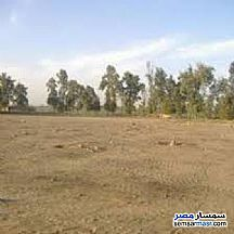 Ad Photo: Land 20 acre in October Gardens  6th of October