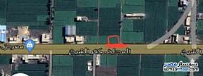 Land 525 sqm For Sale Kafr Al Sheikh City Kafr El Sheikh - 1