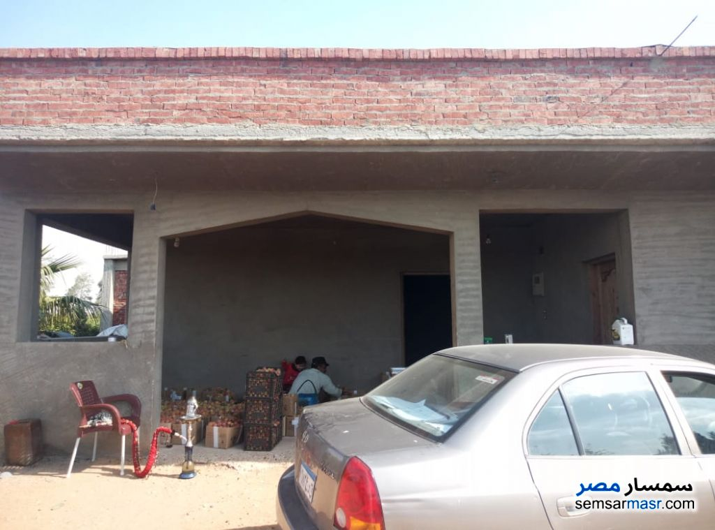 Photo 2 - Farm 46,200 sqm For Sale Bilbeis Sharqia