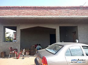 Farm 46,200 sqm For Sale Bilbeis Sharqia - 2
