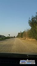 Ad Photo: Farm 10 acre in Tamiya  Fayyum