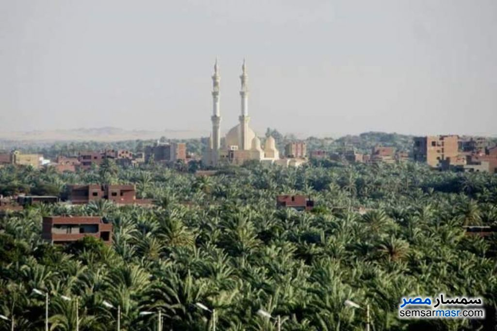 Ad Photo: Farm 25 acre in Egypt