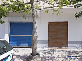 Adjacent Shops for Rent in Alexandria-Matrough Road , Kilo 21