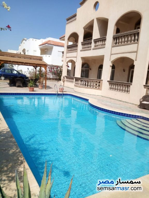 Photo 4 - Chic villa for rent in Hurgada For Rent Hurghada Red Sea