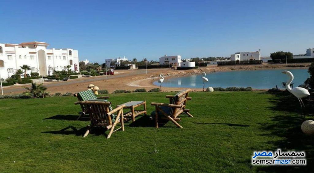 Photo 10 - Clean and Elegant villa in El Gouna For Rent Hurghada Red Sea