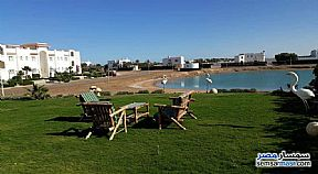 Clean and Elegant villa in El Gouna For Rent Hurghada Red Sea - 10